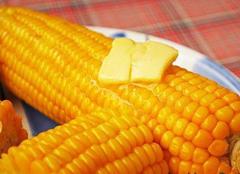 Калорійність вареної кукурудзи